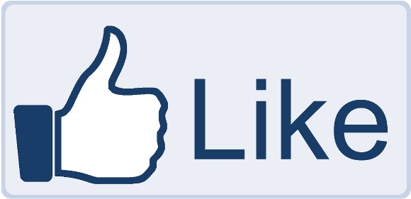 "Why I LIKE (and Use) Facebook ""Like"" Ad Campaigns"